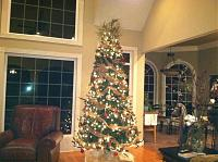 Click image for larger version.  Name:tree.jpg Views:18 Size:99.2 KB ID:795