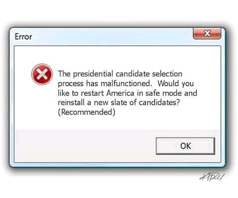 Name:  RebootElection.jpg Views: 20 Size:  22.5 KB