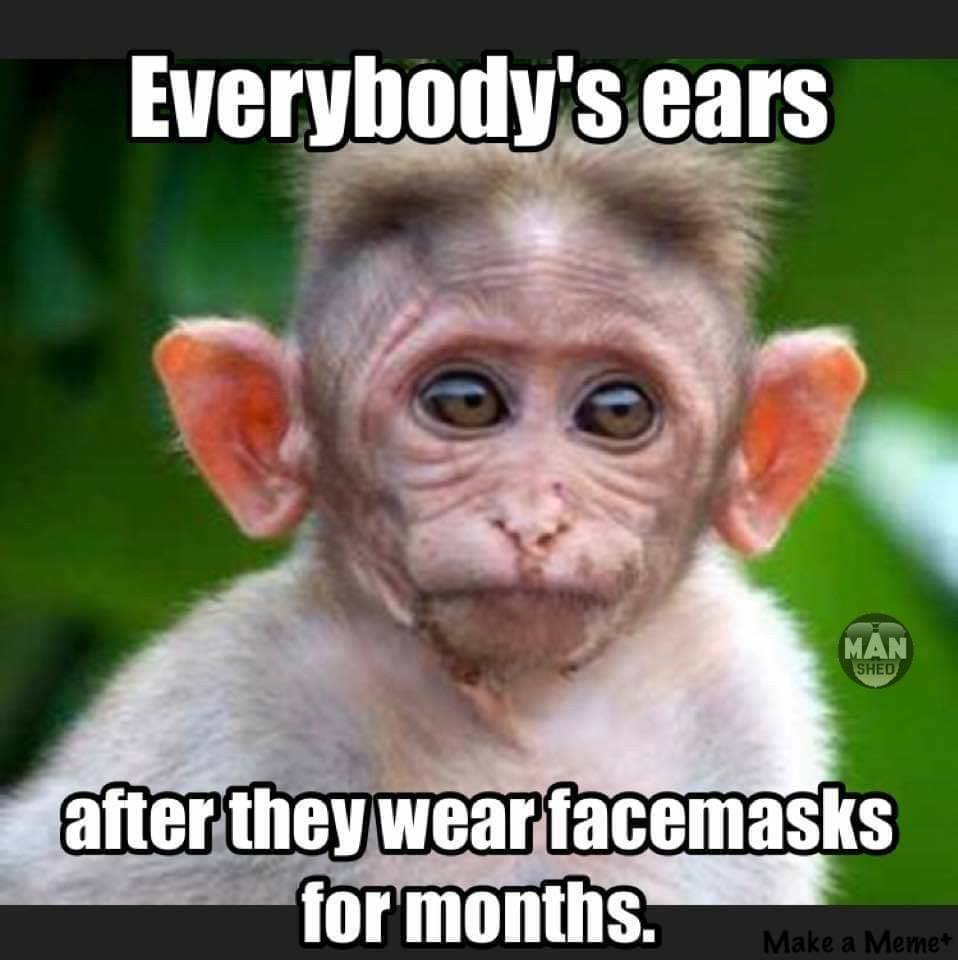 Name:  face mask - ears.jpg Views: 45 Size:  68.5 KB